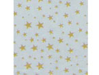 4″ x 9″ Gold Star Cellophane Bags