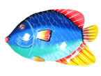 18″ Damselfish