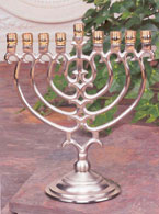 Silver and Brass Menorah